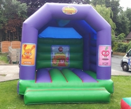 12x14 Moshi Monsters 45.00 per day