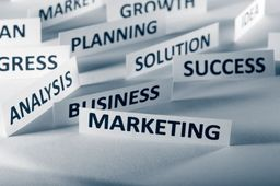 BUSINESS AND MANAGEMENT CONSULTANTS