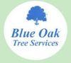 Blue Oak Tree Services