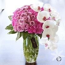 Luxury Rose Orchid Vase Sandras Florist