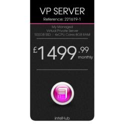Virtual Private Server 500GB