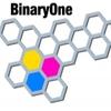 Binaryone - SEO Services