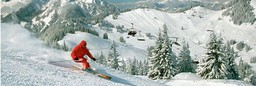 Skiing holidays to Austria and Italy