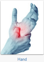 The Hertfordshire Orthopaedic Centre specialises in the following hand conditions and procedures: Carpal Tunnel Syndrome; Trigger Finger; Dupuytren's Contracture; De Quervains; Ganglion Cysts; Mallet Finger; Scaphoid Fractures; Tendon and Nerve Conditions