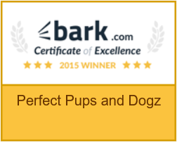 bark.com certificate of excellence recipient