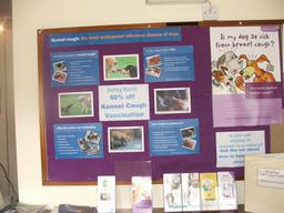 one of our many information displays regularly updated i our reception area