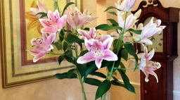 Tregolls Manor Lillies in the Lobby