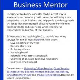 Flyer Business Mentor