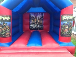Turtle Castle 12 X 10 From £50