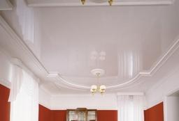 Restaurant Ceiling 4