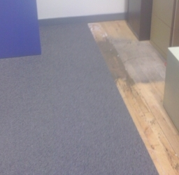 Installing carpet tiles in an office
