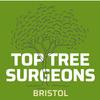 Top Tree Surgeons Bristol