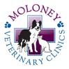 Moloney Veterinary Clinics, Dunmow Branch