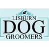 Lisburn Dog Groomers